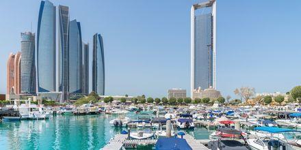 Al Bateen marina i Abu Dhabi, De Forenede Arabiske Emirater.