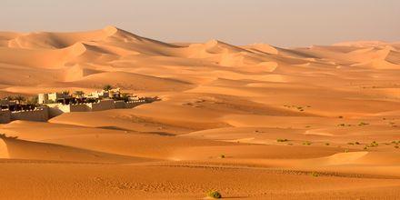 Ørken udenfor Abu Dhabi, De Forenede Arabiske Emirater.