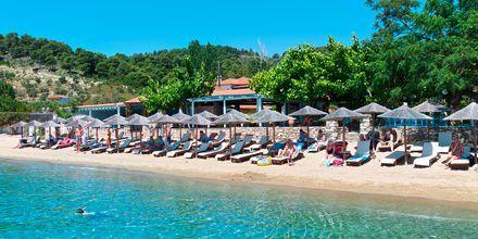Stranden ved Achladies på Skiathos, Grækenland.