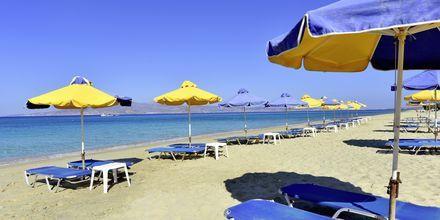 Agia Anna/Plaka Beach på Naxos i Grækenland.