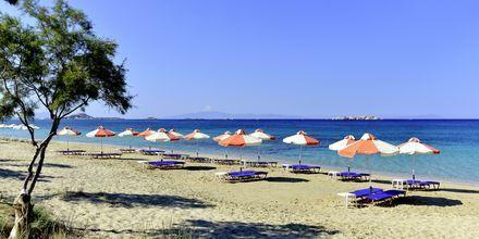 Plaka Beach på Naxos i Grækenland.
