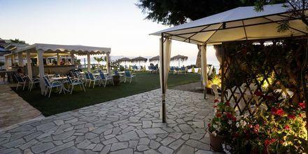 Hotel Santa Marina Beach i Agia Marina på Kreta, Grækenland.