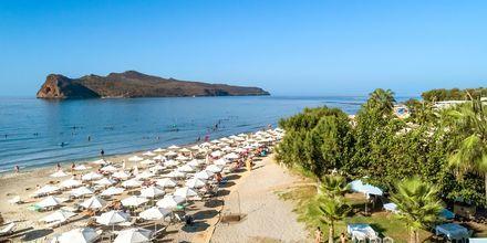 Strand i Agia Marina på Kreta, Grækenland.