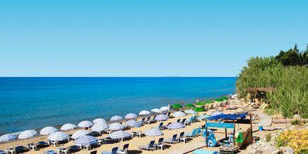 Lakkiess Beach i Agios Georgios på Korfu, Grækenland.