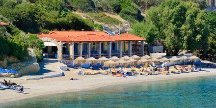 Stranden ved Hotel Agrilionas på Samos, Grækenland.