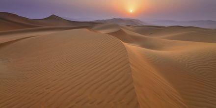 Smuk ørkenudsigt.