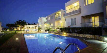 Hotel Akoition i Agia Marina, Kreta