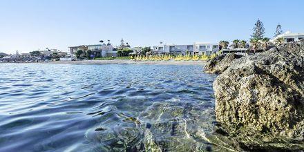Stranden ved Hotel Akoition i Agia Marina, Kreta