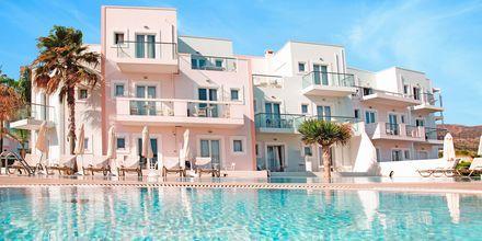 Poolen på lejlighedshotellet Akrogiali i Malia på Kreta, Grækenland