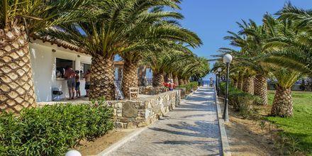 Hotel Akti Beach Club i Kardamena på Kos, Grækenland.