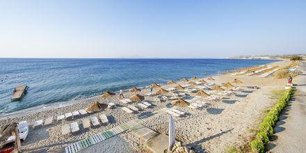 Stranden ved hotel Akti Beach Club i Kardamena på Kos