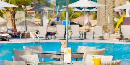 Poolbar på hotel Al Raha Beach i Abu Dhabi, De Forenede Arabiske Emirater.