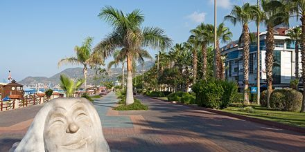 Strandpromenaden i Alanya i Tyrkiet.