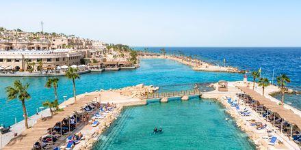 Lagunen på Hotel Albatros Citadel Resort i Sahl Hasheesh, Egypten.