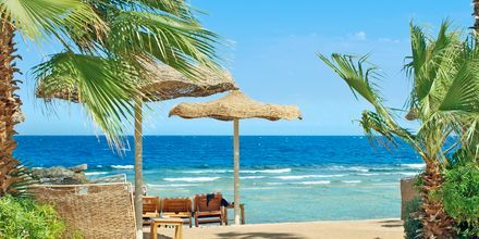 Hotellets strand ved Hotel Albatros Citadel Resort i Sahl Hasheesh, Egypten.