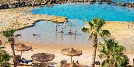 Hotel Albatros Citadel Resort i Sahl Hasheesh, Egypten.