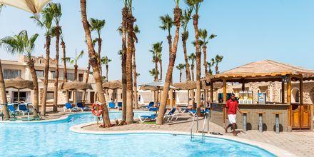 Poolområde med poolbar på Hotel Albatros Citadel Resort i Sahl Hasheesh, Egypten.