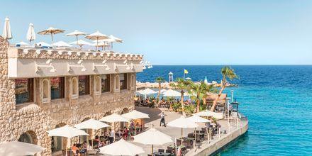 Nyd middag med havudsigt på Hotel Albatros Citadel Resort i Sahl Hasheesh, Egypten.