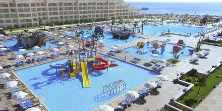 Poolområde på Albatros White Beach Resort i Hurghada
