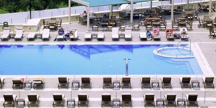 Albatross Hotel & Spa