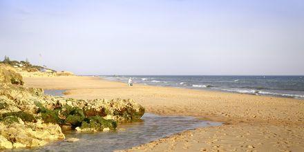 Praia Salgados-stranden ved Albufeira på Algarvekysten, Portugal.