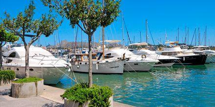 Havnen i Alcudia (Port de Alcudia) på Mallorca, Spanien.