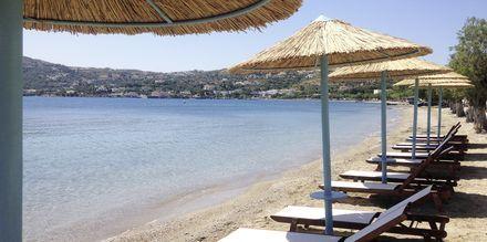 Stranden ved Hotel Alea Mare på Leros, Grækenland.