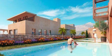 Skitsetegning af privat samt delt pool på Hotel Alegria Beach Resort i Plakias på Kreta, Grækenland.