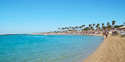 Stranden Dana Beach, hvor Alf Leila Wa Leila Waterparks gæster kan sole og bade.