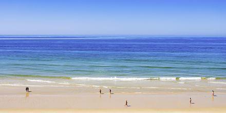 Falesia Beach ved Albufeira på Algarvekysten, Portugal