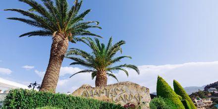 Alianthos Garden