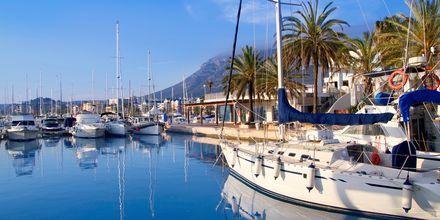 Havnen i Alicante.