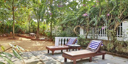 Hotel Alidia Beach Resort i Det Nordlige Goa, Indien.