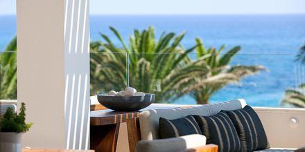 Terrasse på Hotel Alion Beach i Ayia Napa, Cypern