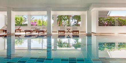 Indendørs pool på Hotel Alion Beach i Ayia Napa, Cypern