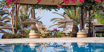 Pool på Hotel Alion Beach i Ayia Napa, Cypern