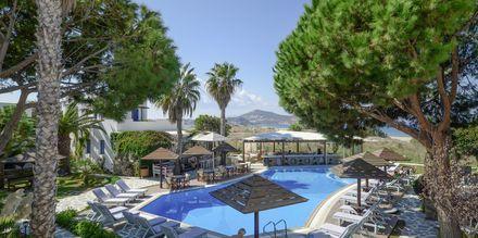 Poolen på hotel Alkyoni Beach i Naxos by, Grækenland.