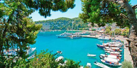 Guddommelige Alonissos, Grækenland.