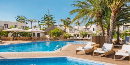 Poolområde Premium Club for gæster i junior-suiter Premium på Alua Suites Fuerteventura.