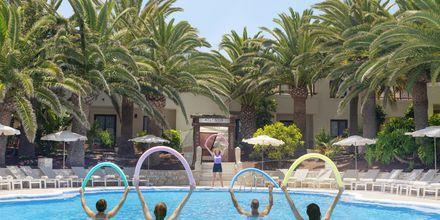 Poolområde på Alua Suites Fuerteventura.