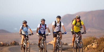 Lej en cykel og udforsk Fuerteventura.