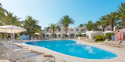 Poolområdet Plaza på Alua Suites Fuerteventura.