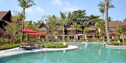 Poolen ved Thai Village Wing og Garden Wing på hotel Amari Koh Samui.