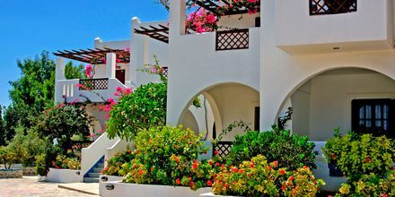 Hotel Amopi Bay på Karpathos, Grækenland.