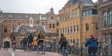 Cykler er det mest udbredte transportmiddel i Amsterdam, Holland.