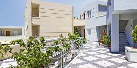 Hotel Anais Summerstar i Agii Apostoli på Kreta, Grækenland.