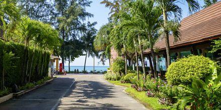 Vejen ned til stranden fra Aonang Princeville Villa Resort & Spa i Krabi, Thailand.