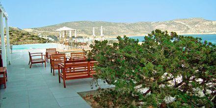 Hotelbaren på Hotel Apolis på Karpathos, Grækenland.