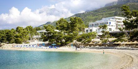 Stranden ved Hotel Apollo Mondo Family Romana i Kroatien.