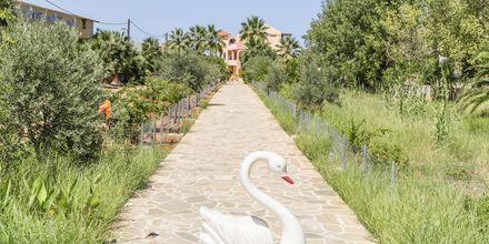Hotel Aquamar på Kreta, Grækenland.